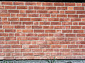 Solna Brick wall Silesian bond variation1.jpg