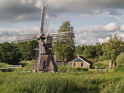 """Spiderhead windmill in Dutch Nationall park """"De Weerribben"""""""