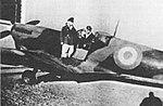 Spitfire HF Mk.IX Argentine Air Force.jpg