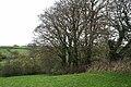 St Giles in the Wood, near Higher Barndown - geograph.org.uk - 606531.jpg