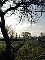 Staddlethorpe Broad Lane - geograph.org.uk - 635684.jpg