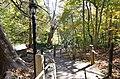 Stairs down to bridge deck floor from Visitor Center natural bridge state park-bottom (30285534550).jpg