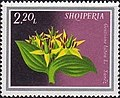 Stamp of Albania - 1974 - Colnect 354134 - Gentian Gentiana lutea.jpeg
