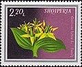 Stamp of Albania - 1974 - Colnect 354134 - Gentian Gentiana lutea.jpeg
