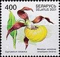Stamp of Belarus - 2001 - Colnect 85839 - Cypripedium calceolus.jpeg