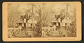 Steaming down Oklawaha River, Florida, from Robert N. Dennis collection of stereoscopic views 2.png