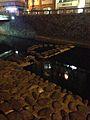 Stepping Stones in Nakashimagawa River at night.jpg