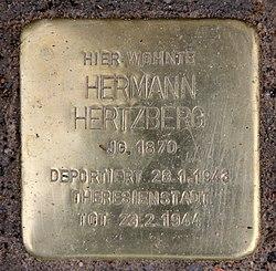 Photo of Hermann Hertzberg brass plaque