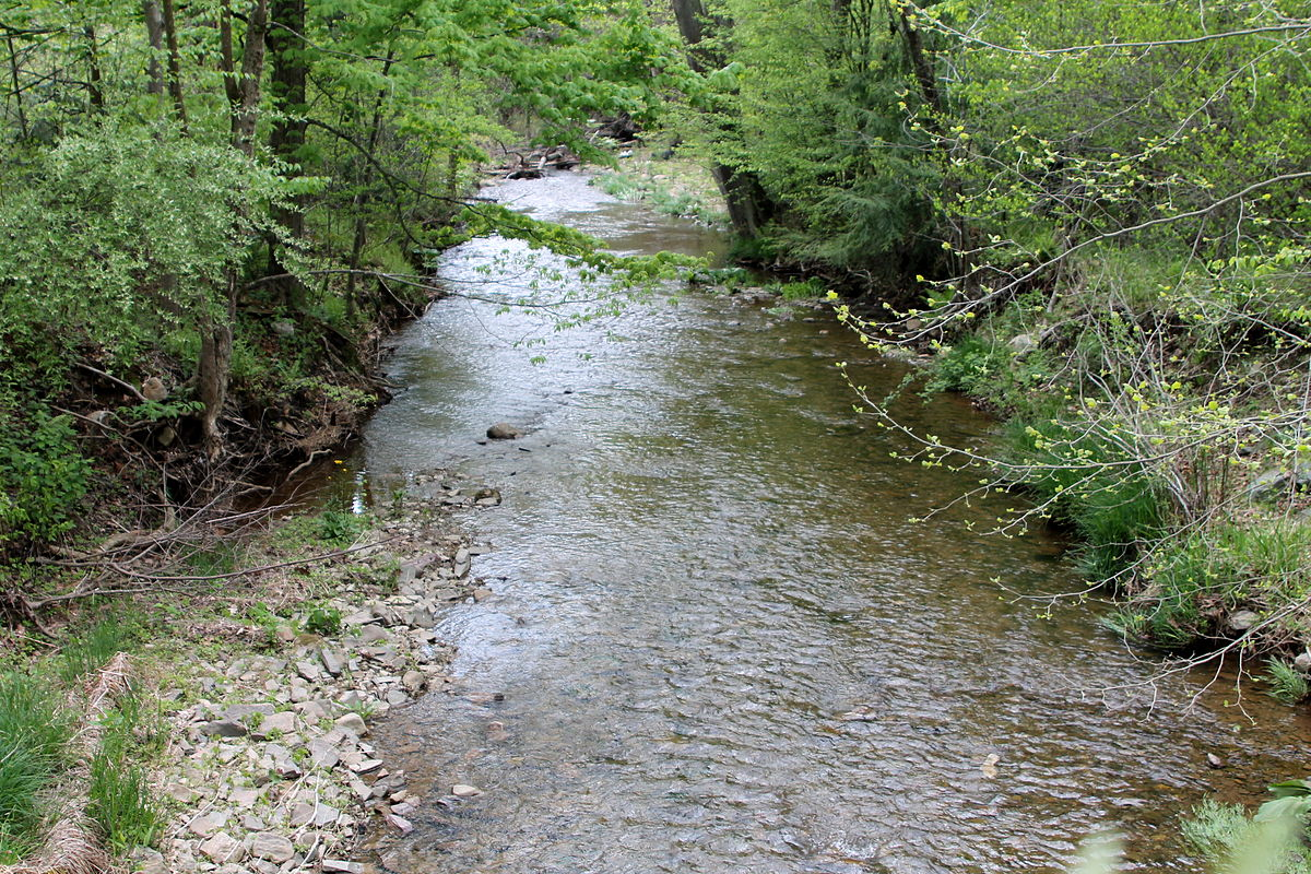 Stony brook fishing creek tributary wikipedia for Fishing creek pa