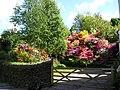 Summer Colour - geograph.org.uk - 750575.jpg