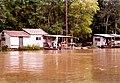 Swamp Tour Louisiana March 1991 04.jpg
