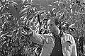 TV-opnamen van Van Muizen en mensen Cor van Rijn (als George), Bestanddeelnr 922-0588.jpg