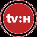 TV Halle Logo alternativ 2015.png