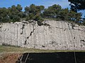 Talús de l'autopista al Puig Pedrós de l'Obac P1510046.jpg
