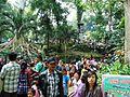 Taman Hewan Pematang Siantar (3).JPG