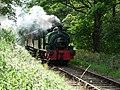 Tanfield railway pic 1.jpg