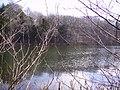 Tarn, Witherslack - geograph.org.uk - 141149.jpg