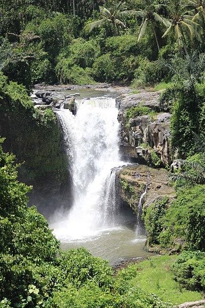 Tegenungan Waterfall Ubud Indonesia - panoramio (6).jpg