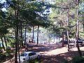Tepe - piknik - saklı göl longuner - panoramio.jpg