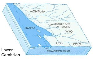 Geology of the Grand Teton area - In the Lower (early) Cambrian, the Teton region was on the edge of a shallow seaway called the Cordilleran trough.