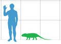 Tetraceratops size.png
