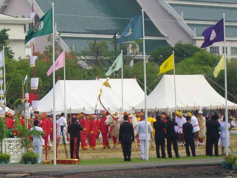 ไฟล์:Thai Royal Ploughing Ceremony 2009 - 1.jpg