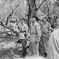 The Battles of Monte Cassino, January - May 1944 NA15352.jpg