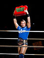 The Miz Money in the Bank.jpg