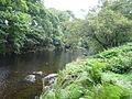 The River Elan - geograph.org.uk - 943828.jpg