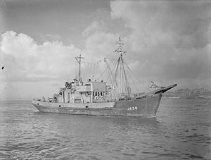 MMS-class minesweeper - Image: The Royal Navy during the Second World War A14421