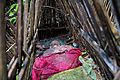 The deceased covered in rudimentary cage, Trunyan, Bali.jpg