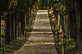 The path to the church in vergouvitsa.jpg