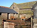 The tenants of Fenhampton farm - geograph.org.uk - 629851.jpg