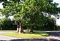 The war memorial Norton - geograph.org.uk - 449639.jpg