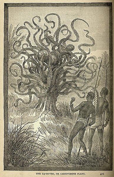 http://upload.wikimedia.org/wikipedia/commons/thumb/6/60/The_ya-te-veo.jpg/387px-The_ya-te-veo.jpg