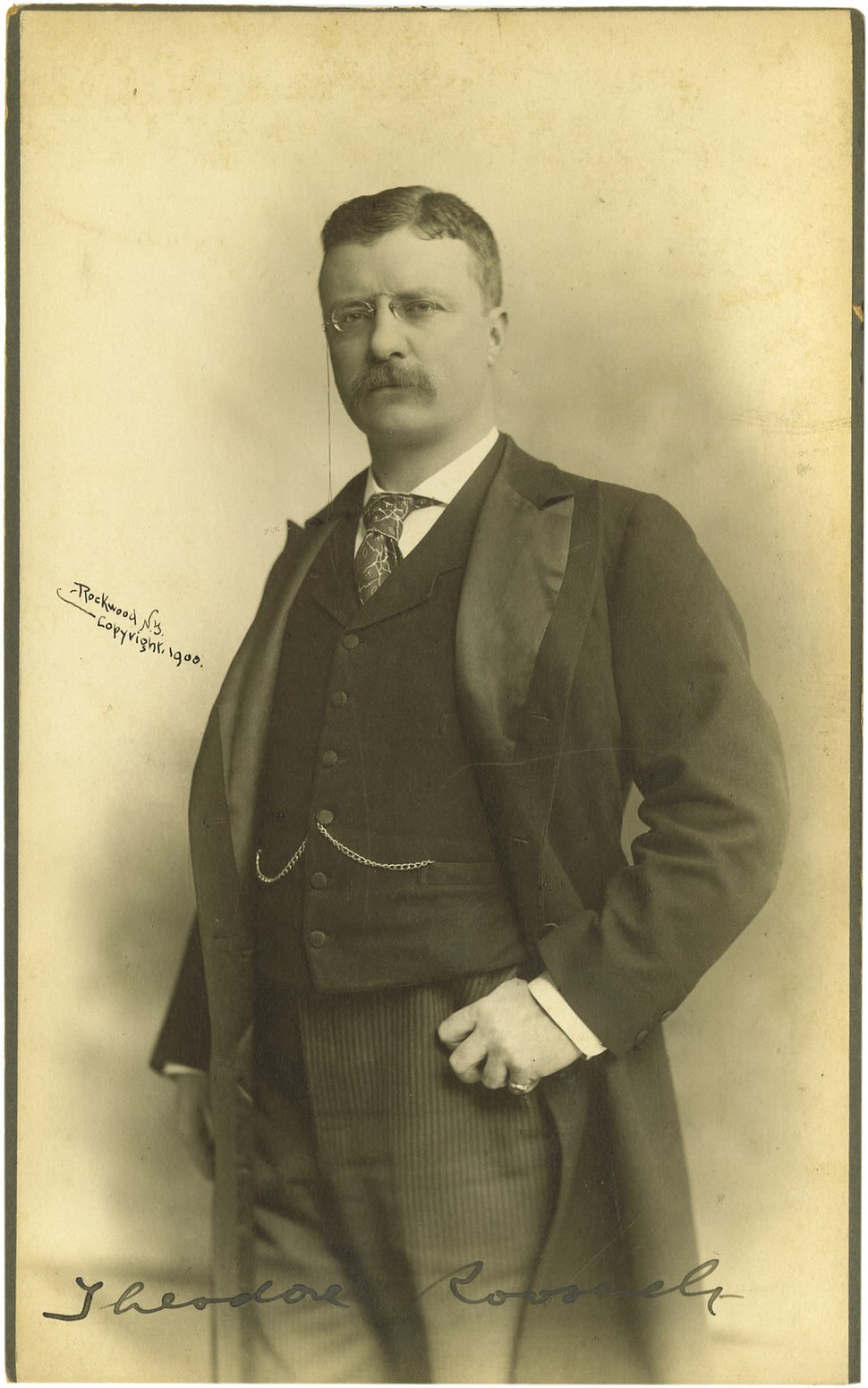Theodore Roosevelt by Rockwood, 1900