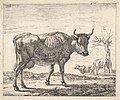 Three Cows MET DP828351.jpg