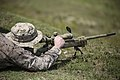 Through the scope, 2nd Battalion, 6th Marines prepares weapons, Marines for deployment 150903-M-ZM882-071.jpg