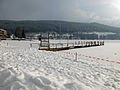 Titisee in winter.jpg