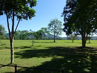 Magnificent Seven Houses - Queen's Park Savannah