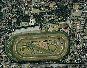 Tokyo Racecourse - Image: Tokyo Racecourse aerial 1989