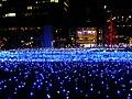 Tokyo Midtown Garden Christmas Illumination 20101205-6.jpg