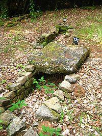 Tombe de la nécropole d'Audun-le-Tiche.jpg