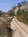 Track between Lomer Farm and Wind Farm - geograph.org.uk - 391322.jpg