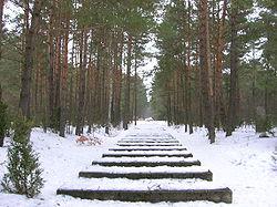 Treblinka - Rail tracks.JPG