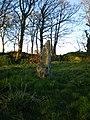 Tremaenhir - standing stone - geograph.org.uk - 1254675.jpg
