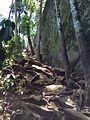 Trilha Cachoeira do Horto.JPG