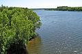 Tsna river in the Sasovsky District.jpg