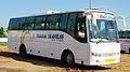 Tt bus 2.jpg