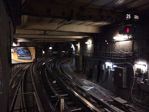 Tunnel ligne 6 et raccordement ligne 1 - ligne 6 du métro de Paris- 2013-12-04 15-26